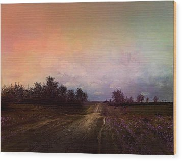Long Road Wood Print by Robert Foster