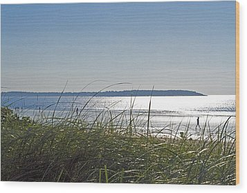 Wood Print featuring the photograph Longing For Summer by John Hoey