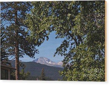 Longs Peak Through The Trees Wood Print by Kay Pickens