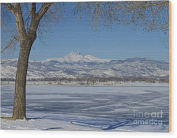 Longs Peaks Winter Landscape View Wood Print by James BO  Insogna