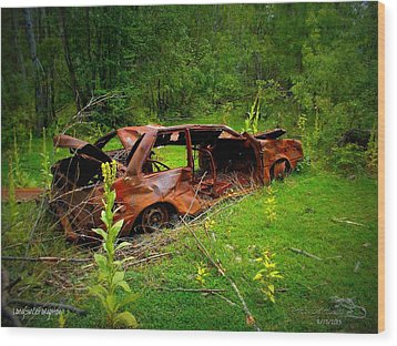 Wood Print featuring the photograph Longsinceforgotton 001 by Guy Hoffman
