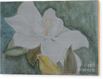Longue Vue Magnolia 3 Wood Print by Katie Spicuzza