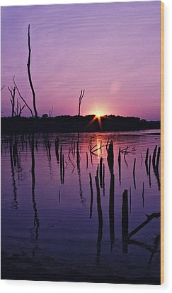 Longview Shore Wood Print