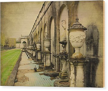 Wood Print featuring the photograph Longwood Gardens Fountains by Trina  Ansel