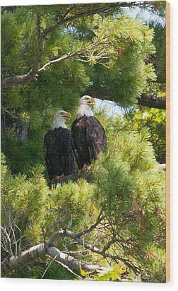 Wood Print featuring the photograph Look Over There by Brenda Jacobs