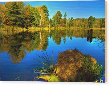 Looking Across The Pond Wood Print by David Simons