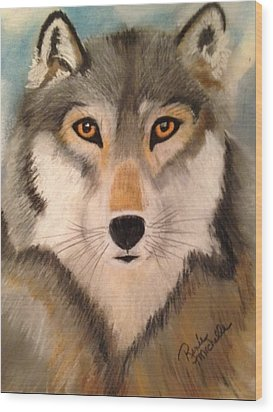 Looking At A Timber Wolf Wood Print