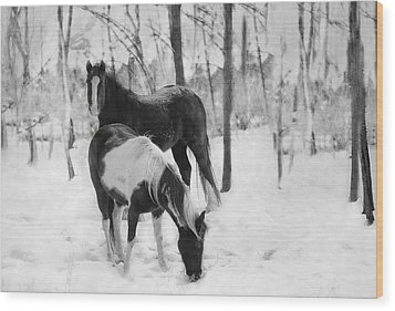 Looking For A Bite Wood Print by Kathy Jennings