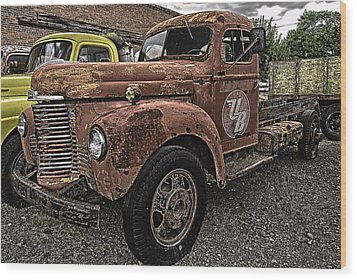 Looking For A New Home Wood Print by Gary Neiss