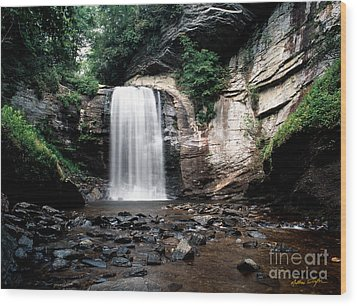 Looking Glass Falls 2007 Wood Print