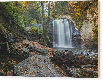 Wood Print featuring the photograph Looking Glass Waterfall by RC Pics