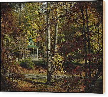 Wood Print featuring the photograph Looking Into Fall by James C Thomas