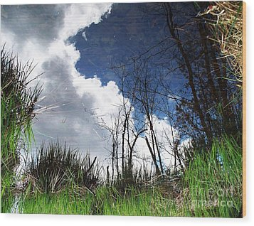 Looking Into The Bog Wood Print by Joy Nichols