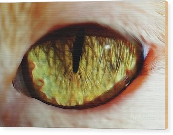 Looking Into The Soul Wood Print by Mariola Bitner