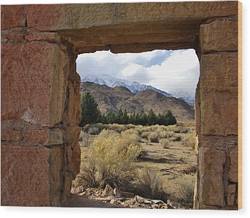 Wood Print featuring the photograph Looking Out by Marilyn Diaz