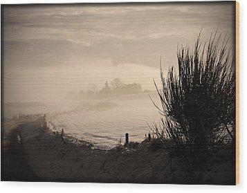 Looking South Wood Print by Liz  Alderdice