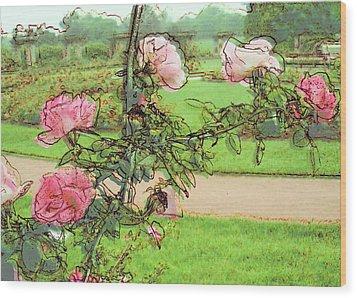 Looking Through The Rose Vine Wood Print by Stephanie Hollingsworth