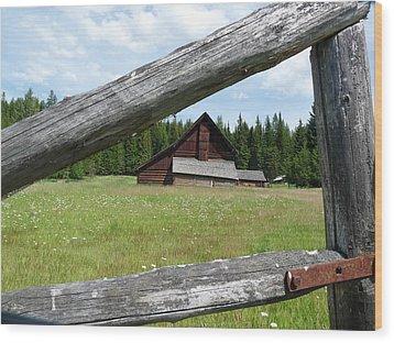Looking Thru The Fence Wood Print by Alan Socolik