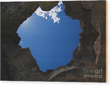 Wood Print featuring the photograph Looking Up 2 by Debra Thompson