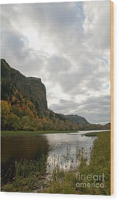 Looking Up At Crown Point Wood Print by Cari Gesch