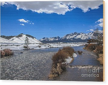 Looking Up The Salmon River Wood Print by Robert Bales