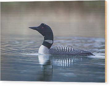 Wood Print featuring the photograph Loon by Jack Bell