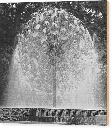 Loring Fountain Black-and-white Wood Print by Rashelle Brown
