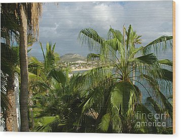 Los Cabos Wood Print by M West