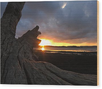 Los Osos Driftwood Wood Print by Paul Foutz