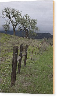 Los Padres National Forest Wood Print