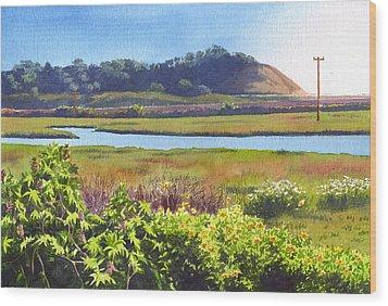 Los Penasquitos Creek Torrey Pines Wood Print by Mary Helmreich