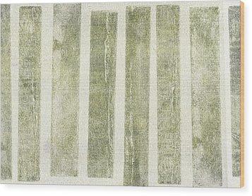 Lost But Not Broken Wood Print by Brett Pfister