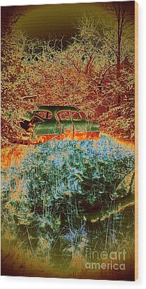 Wood Print featuring the photograph Lost Car by Karen Newell