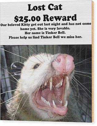 Lost Cat Cash Reward Wood Print by Michael Ledray