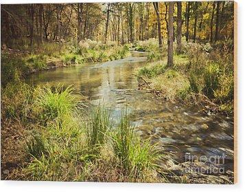 Lost Creek In Autumn Morning Wood Print by Iris Greenwell