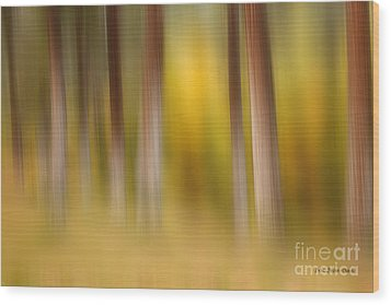 Lost In Autumn Wood Print by Beve Brown-Clark Photography
