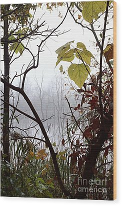 Wood Print featuring the photograph Lotor Lake by Jack R Brock