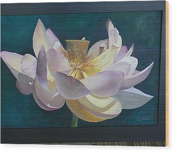 Lotus Flower Wood Print by Catherine Hamill