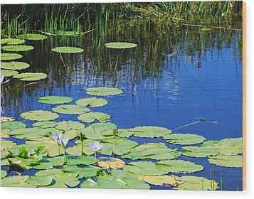 Wood Print featuring the photograph Lotus-lily Pond by Ankya Klay