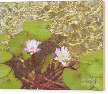 Wood Print featuring the photograph Lotus by Mini Arora