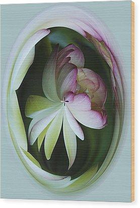 Lotus Mirror Wood Print by Jean Noren