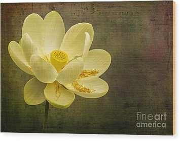 Wood Print featuring the photograph Lotus Notes by Vicki DeVico