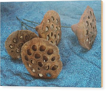 Wood Print featuring the photograph Lotus Pods by Diane Alexander