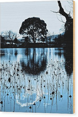Lotus Pond Winter - 4 Wood Print by Larry Knipfing