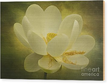 Wood Print featuring the photograph Lotus by Vicki DeVico