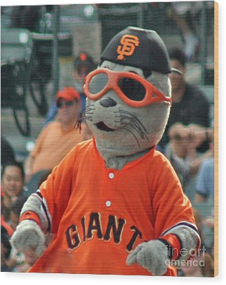 Lou Seal San Francisco Giants Mascot Wood Print