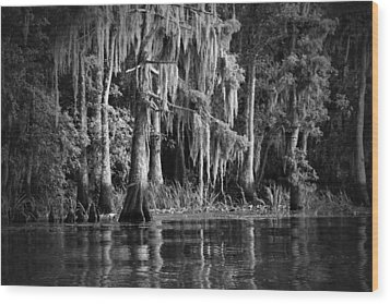 Louisiana Bayou Wood Print by Mountain Dreams