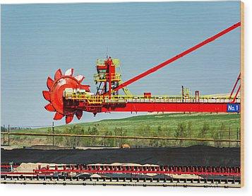 Louisiana Giant 3 Wood Print by Steve Harrington
