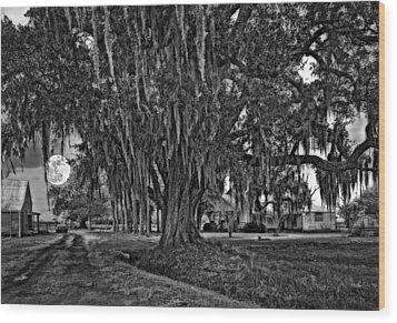 Louisiana Moon Rising Monochrome  Wood Print by Steve Harrington