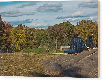 Lounging In Central Park Wood Print